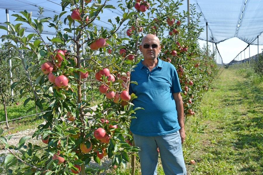 Apple Grower Triples Yields with USAID Facilitation